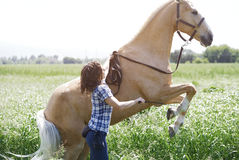 Woman training horse to rear up. At the field royalty free stock photos