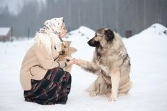 Woman trains Caucasian Shepherd and yard dog on a snowy ground in the park royalty free stock image