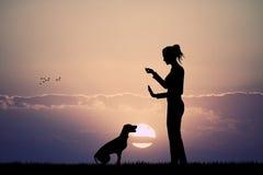 Woman trains dog at sunset Royalty Free Stock Photo