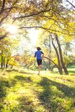 Woman trains in nature. Runner in flight phase. The girl runs through the autumn park. Slender woman trains in nature. Sports in the forest. Brunette runs along royalty free stock photography