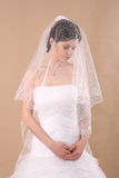 Woman with Transparent Wedding Veil Stock Images
