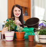 Woman transplanting flowers plant in flowerpot Royalty Free Stock Photo