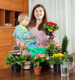 Woman  transplanting potted flowers at table Stock Image