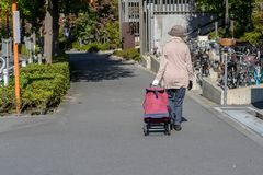 Woman with travel suitcase or luggage walking. In Japan Royalty Free Stock Photography