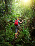 Woman traveler with backpack climb the hill in forest. Woman traveler with backpack climb the hill in rain forest. Adventure, travel, tourism, hike in jungle stock photography