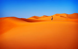 Woman traveler in desert. Woman walking in desert, active lifestyle, summertime adventure, expedition in the dunes , hiking trip in sahara, travel and vacation Stock Photo