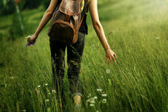Woman traveler walking among grass in meadow and holding in hand. Gathering wildflowers in mountains in sunlight, back view,  space for text Royalty Free Stock Photo