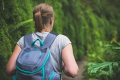 Woman traveller. Woman traveller with backpack in the forest Royalty Free Stock Image