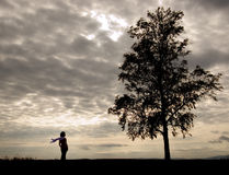 Woman and tree stock photography