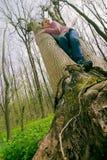 Woman in tree Stock Image