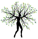 Woman tree Stock Images