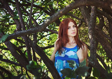 Woman between tree branches Royalty Free Stock Images