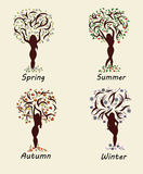 A woman tree in four seasons Stock Photos