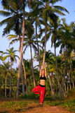Woman in tree pose Vrikshasana. Beautiful woman in red Indian trousers doing tree pose vrikshasana surrounded by palm tree forest. India, Kerala stock image