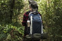 Woman trekking in a forest Royalty Free Stock Images