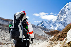Woman trekking in Himalaya Royalty Free Stock Photo
