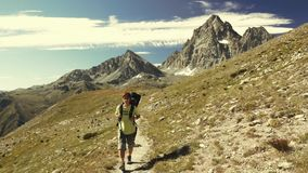 Woman trekking in idyllic mountain landscape on footpath crossing blooming green meadow set amid high altitude rocky mountain rang stock video footage