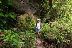 Woman trekking in jungle Stock Photography