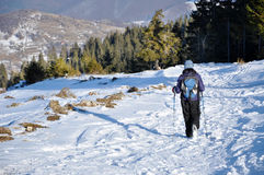 Woman trekking in the mountains at winter Stock Photo