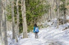 Woman trekking in winter mountains. Stock Photo