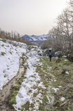 Woman trekking in winter mountains. Royalty Free Stock Photo