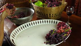 Woman trim a bunch of grapes at a wooden table stock video footage