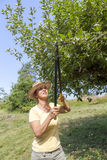 Woman trimming the apple tree Royalty Free Stock Photography