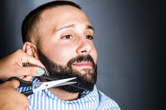 Woman is trimming the beard of a young man Stock Photos