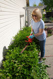 Woman trimming bushes Stock Photos