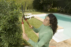 Woman Trims Hedges - Horizontal Stock Image