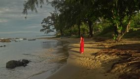 The woman on the tropical island walks on the beach along water.  stock video
