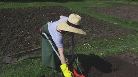 Woman try to turn on engine of cultivator on field. In summer day stock video footage