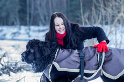 woman trying a dog to make sit Stock Photography
