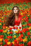Woman in tulips Royalty Free Stock Image