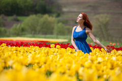 Woman in tulips flowers posing in blue dress Stock Images