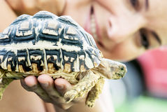Woman with turtle. Positive veterinary woman hold in hand a turtle Royalty Free Stock Image