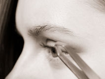 Woman tweezing eyebrows depilating with tweezers. Woman plucking eyebrows depilating with tweezers closeup part of face. Girl tweezing eyebrows, black & white royalty free stock images