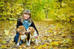Woman with two beagles Stock Photography