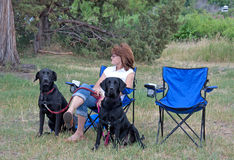 Woman With Two Black Dogs. A woman sits with two black Labrador retriever dogs relax in a park on a nice day Stock Image