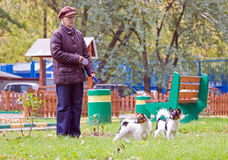 Woman with two dogs Royalty Free Stock Photo
