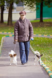 Woman with two dogs Stock Images