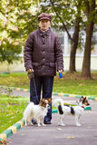 Woman with two dogs Royalty Free Stock Photography