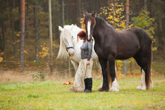 Woman with two horses Stock Image