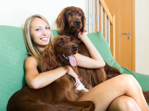 Woman and  two  Irish setters Stock Image