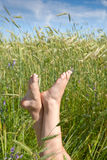 Woman two legs in green grass field under blue sky. In summer Royalty Free Stock Photography