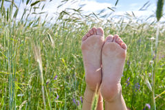 Woman two legs in green grass field under blue sky Stock Image