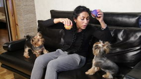 Woman and two pets dogs stock video footage