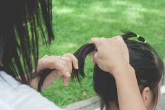 Woman tying black hair of little cute child in ponytail style with elastic band at public park. stock photo
