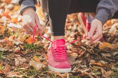 Woman tying laces of running shoes before training stock photos