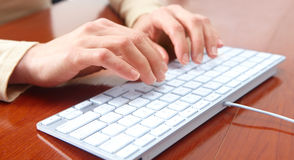 Woman typing Stock Photography